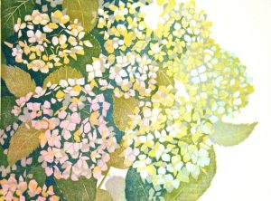 Hortensia, midden rechts/Hydrangea, middle right