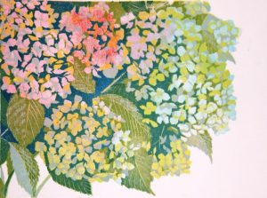 Hortensia, onder rechts/Hydrangea, bottom right