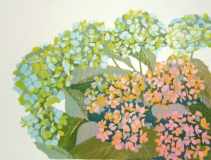 Hortensia, boven links/Hydrangea, top left