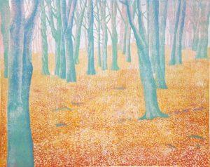 Blauwe beuken / Blue beech trees