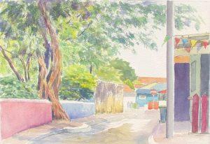 St. Jago Indjuboom / St. Jago Indju tree